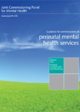 Joint Commissioning Panel perinatal mental health services.pdf